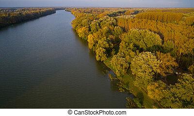 tisza, rio, ligado, húngaro, em, floresta outono