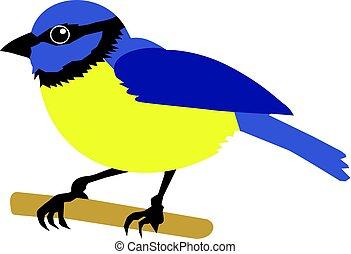 tit bird - vector illustration of tit bird