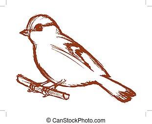 tit bird on branch - vector, sketch, hand drawn illustration...