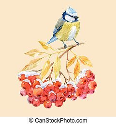 Titmouse bird and ashberry - Beautiful image with nice...