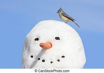 Titmouse On A Snowman