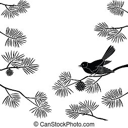 Titmouse on pine branch, cutout - Black and white background...