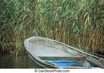 tittande, pir, boats.