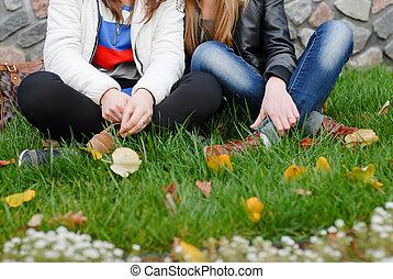 tizenéves, ülés, két, zöld, leány, fű, barátok