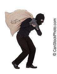 tjuv, bärande, a, stort, pengars väska