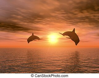 to, delfin