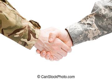 to, militær, mænd hånd ryste, på hvide, baggrund, -, rykke sammen, studio skød