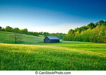 Tobacco Barn in a Field