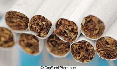 Tobacco in Cigarettes - frames tobacco in cigarettes macro