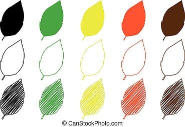 tobacco leaf vector illustration - set