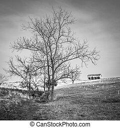 tobbacco, stary, pagórek, stodoła