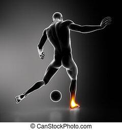 tobillo, articulaciones, enfatizado, deportista, más