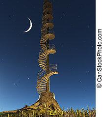 toco, escadaria, árvore, céu, levanta-se, crepúsculo, circular