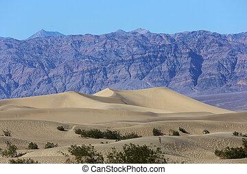 tod, usa, nationalpark, tal, kalifornien