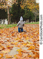 toddler boy in fall