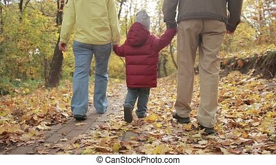 Toddler boy walking with grandparents in autumn - Back view...