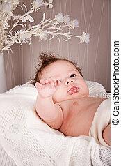 toddler, cesta, pequeno, doce, cobertor, bebê, criança