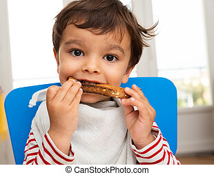 Toddler eating a toast
