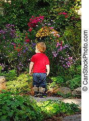 Toddler garden - Toddler admiring a beautiful blooming...