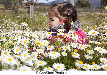 Toddler girl sitting in the daisy field