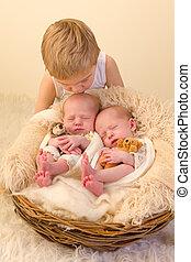 Toddler kissing newborn twin sisters