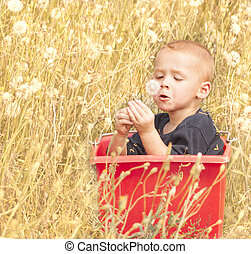 Toddler sitting in the tall grass.