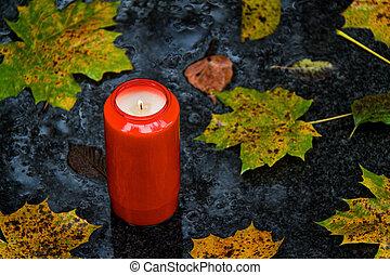 todos, luz, hojas, santos, día de otoño, tumba