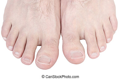 Caucasian male toes isolated on white background.
