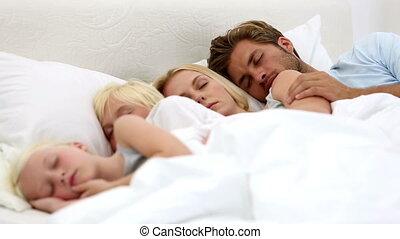 toget, ouders, kinderen, slapende