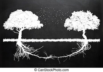 together 1 - Two trees in front of each other with their...