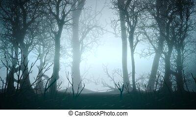 toile de fond, forêt, résumé, sombre, mystique, horreur, bleu, brouillard, fond