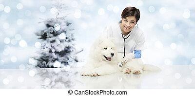toile, vétérinaire, vétérinaire, joyeux, cadeau, espace, chouchou, arbre, chien, noël, clinique, fond, vétérinaire, gabarit, copie, bannière, noël, carte