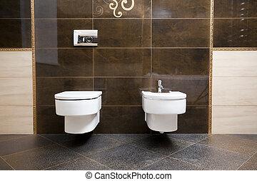 Toilet and bidet - Luxury bathroom closeup - the...