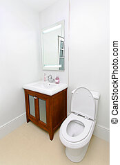 Toilet classic