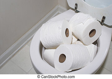 Toilet Overflow - A toilet stopped up with too much papper.