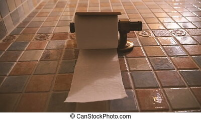 Toilet paper. Toilet paper in the toilet