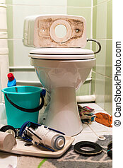 Toilet Repairs Work In Progress