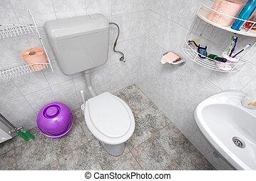 Toilet in a domestic bathroom
