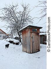 toilette, rural, hiver, chien
