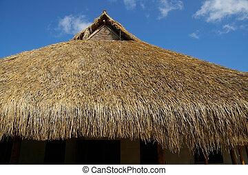 toit, couvert chaume