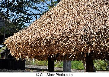 toit, détail, couvert chaume