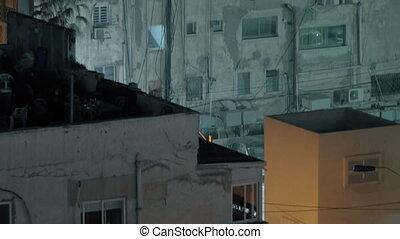 toit, maison, multistorey, porté, nuit, fête