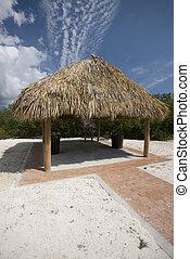 toit, prune, plage, floride, coco, clés, hutte, chaume, tiki