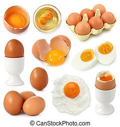 tojás, gyűjtés