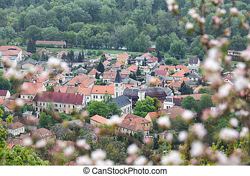 Tokaj town in spring - Beautiful spring in Tokay ? a town in...