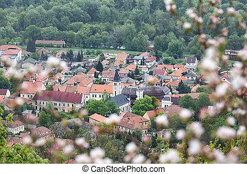 Tokaj town in spring