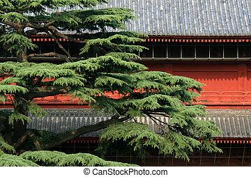 tokio, santuario, japón, zojoji