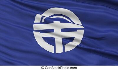 Tokushima Capital City Flag