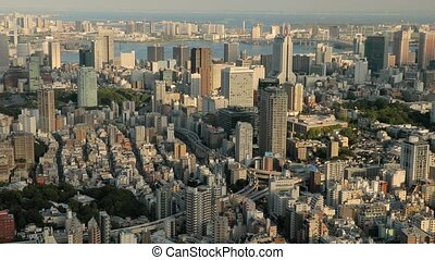 Tokyo Aerial View - View of Tokyo from a high point