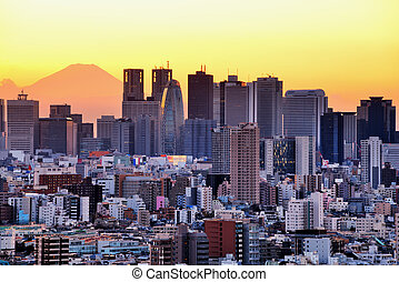 Skyscrapers in the Shinjuku Ward of Tokyo with Mt. Fuji visible.